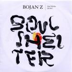 bojan_z_soul_shelter discobus4