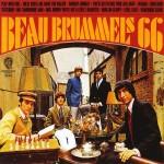 beau_brummels-66  PointCulture mobile 1